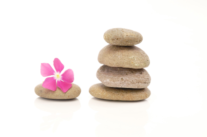 flower-and-pebbles